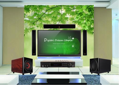 家用电视机哪个牌子好